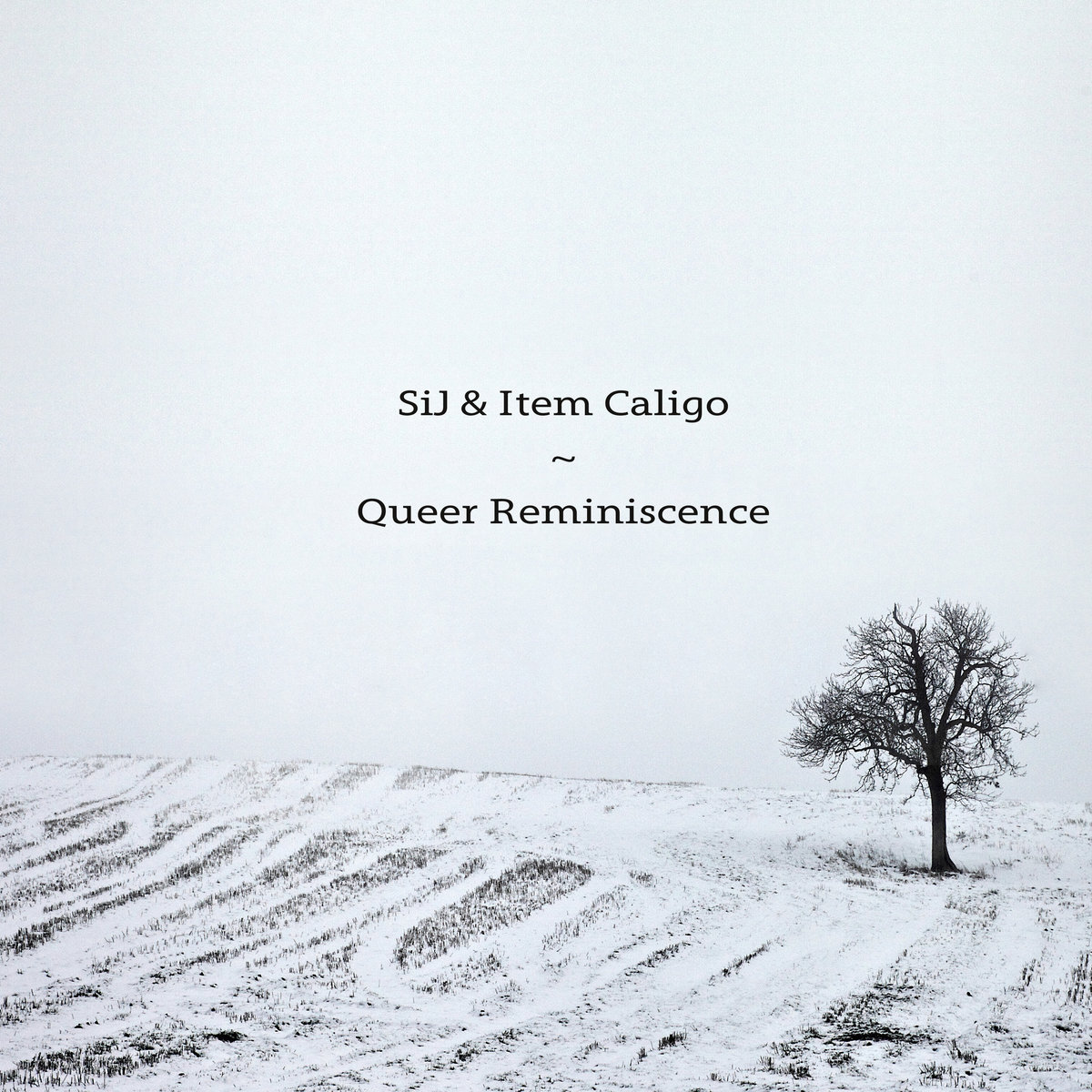 Queer Reminiscence